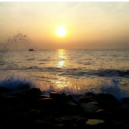 All the way – From Pondicherry